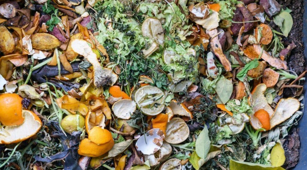 Citrus Composting