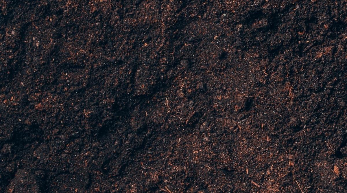 Moist Soil Mixture