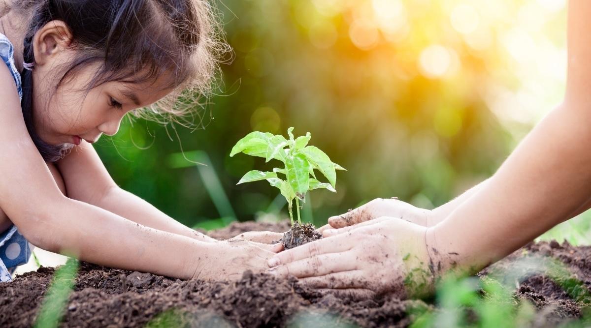 Patient Child Gardening