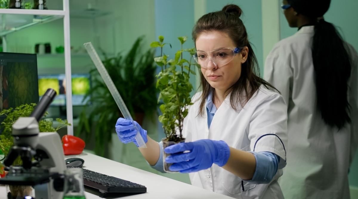 Plant Scientist in Lab