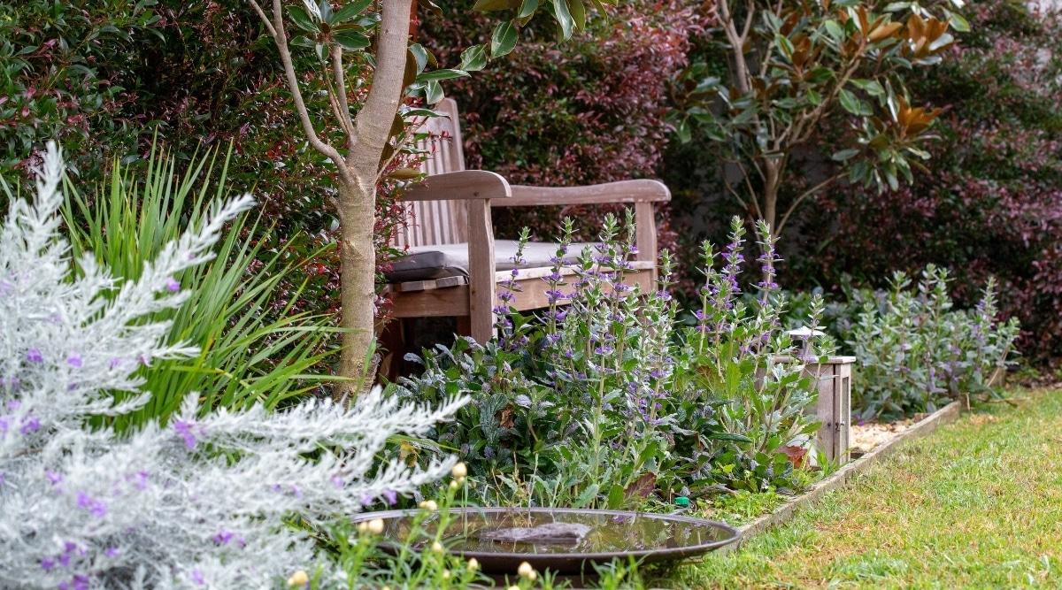 Well-Kept Garden