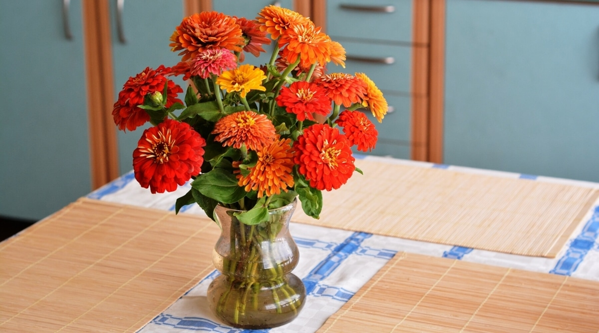 Bouquet of Bright Flowers on a Kitchen Table