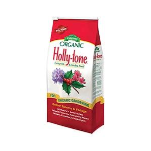 Holly Tone Azalea Food