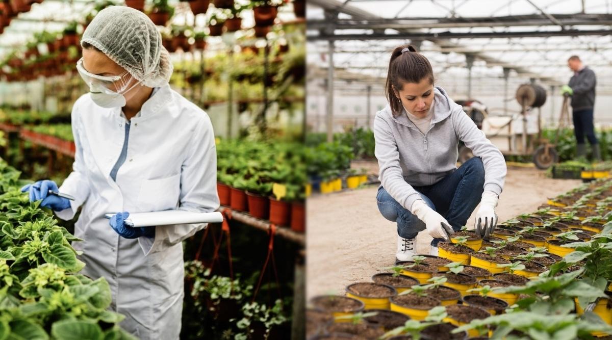 Horticulturist vs Botanist Compared in Gardens
