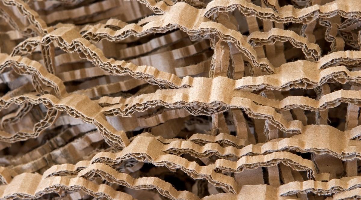 Shredded Cardboard