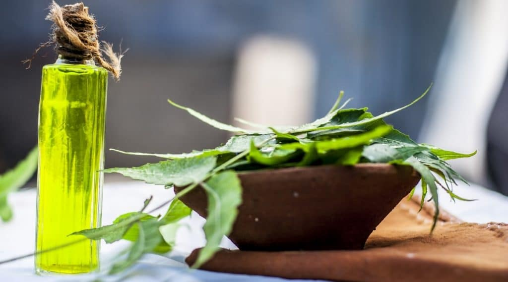 Neem Oil for Gardens