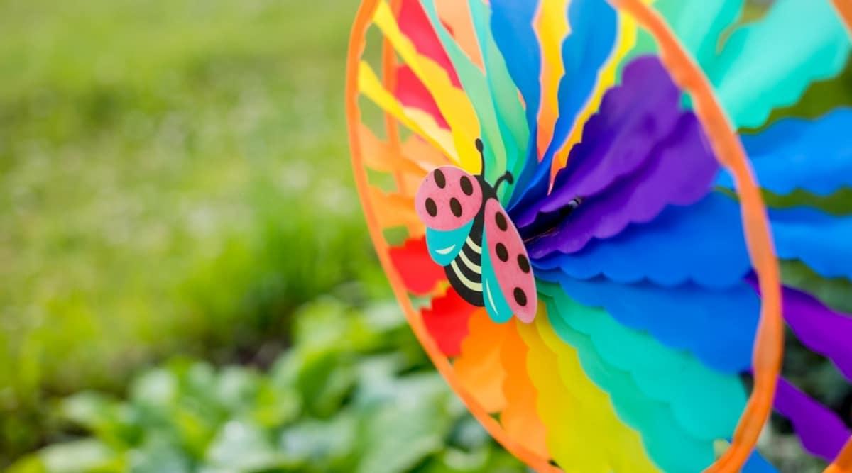 Rainbow Pinwheel in a Garden